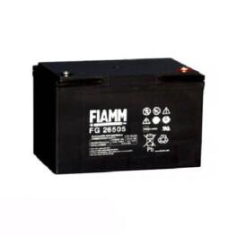 باتری یو پی اس فیام FG26505 12V 65Ah